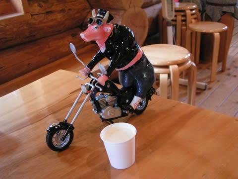 牛とバイクの置物。ライダー特典として、ミニカップ一杯のしぼりたてミルクがいただけます。